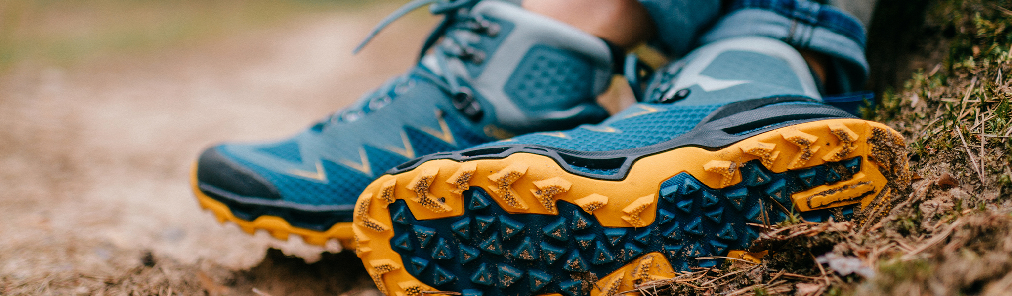 Image of pair of hiking shoes